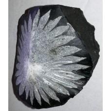 Хризантемен камък No.4