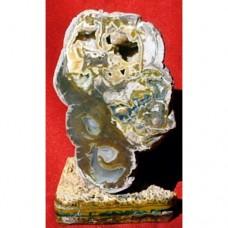 Ахат от Родопите No.2 - летофиза