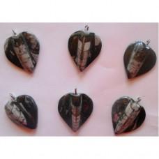 Ортоцерас накит  - сърце